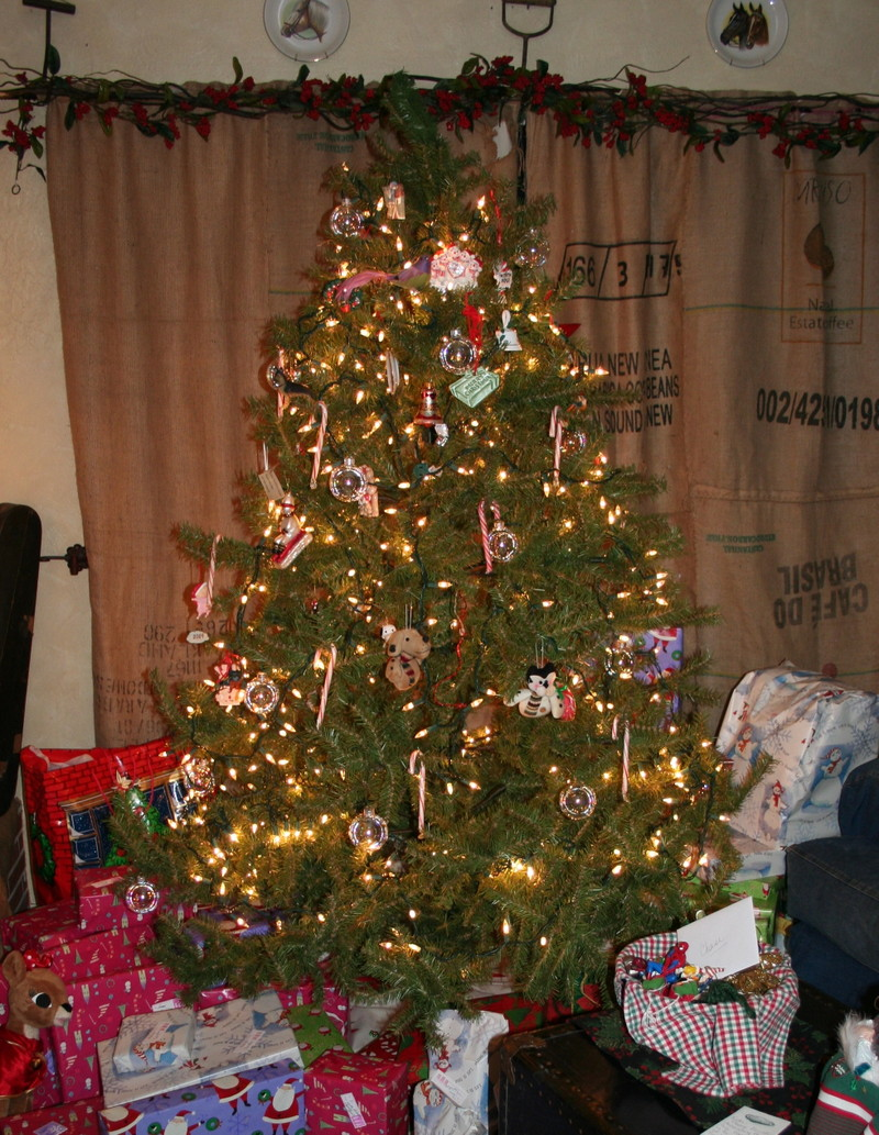 Christmas_tree_before_decorations